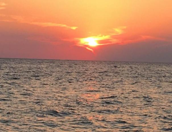 sunsetpcb2